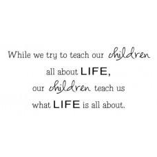 While We Teach...